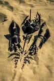 Akcesoria rycerz na piasku obraz royalty free
