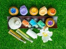 Akcesoria zdrój szorują dla skóry zdrowej na zielonym gazonie Zdjęcie Royalty Free