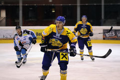 akci gry hokej Zdjęcia Stock