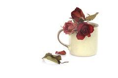 Akcyjna fotografia: czerwień suszył róże do i z szklana waza odizolowywającego o Obraz Royalty Free