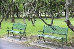 Akcyjna fotografia: Stalowy krzesło w parku Fotografia Stock