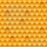 Akcyjna wektorowa ilustracyjna realistyczna honeycomb tekstura Miód, beeswax 10 eps royalty ilustracja