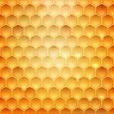 Akcyjna wektorowa ilustracyjna realistyczna honeycomb tekstura Miód, beeswax 10 eps ilustracji