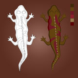 Akcyjna Wektorowa kolorystyki jaszczurka Royalty Ilustracja