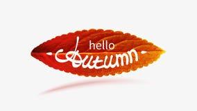 Akcyjnej wektorowej ilustracyjnej sprzedaży jesieni spada liście Jesienny ulistnienie spadek i topola liścia latanie jesień kolor ilustracji