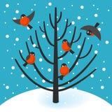 Akcyjny Wektorowy gil na drzewie royalty ilustracja