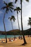 Akcyjny wizerunek Hanauma zatoka, Oahu, Hawaje Obraz Royalty Free