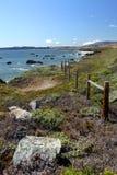 Akcyjny wizerunek Kalifornia centrali wybrzeże, Duży Sura, usa Fotografia Stock