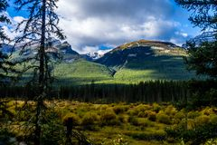 Aken ao longo do parque nacional de Banff da via pública larga e urbanizada do vale da curva, Alberta, Canadá fotografia de stock royalty free