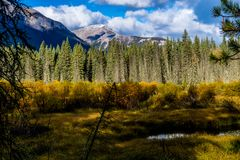 Aken ao longo do parque nacional de Banff da via pública larga e urbanizada do vale da curva, Alberta, Canadá foto de stock