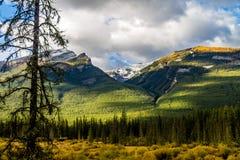 Aken entlang vom Nationalpark Bogen-Tal-Alleen-Banffs, Alberta, Kanada Stockbild