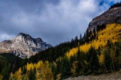 Aken från längs den Banff för pilbågedalgångallé nationalparken, Alberta, Kanada Royaltyfri Bild