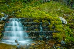Aken a lo largo del parque nacional de Banff de la ruta verde del valle del arco, Alberta, Canadá imagen de archivo libre de regalías