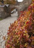 Autumn in Oslo, Norway - colourful leaves at the Akershus Fortress. Akershus Fortress or Akershus Castle is a medieval castle that was built to protect and stock photos