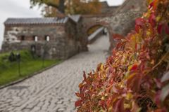 Autumn in Oslo, Norway, Europe - colourful leaves at the Akershus Fortress on a cloudy day. Akershus Fortress or Akershus Castle is a medieval castle that was royalty free stock photos
