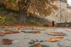 Akershus Fortress - autumnal leaves on the ground. Akershus Fortress or Akershus Castle is a medieval castle that was built to protect and provide a royal stock photo