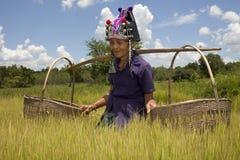 akha亚裔老妇人 免版税库存照片
