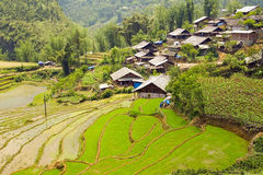 Akha villages in Sapa, Vietnam, Magnificent Rice Terrace Stock Photos