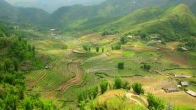 Akhadorpen in Sapa, Vietnam, Prachtig Rijstterras stock footage