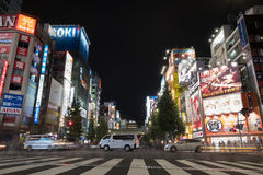 Akiba Royalty Free Stock Image