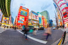 Akihabara at Tokyo in Japan. TOKYO - MARCH 29: Akihabara district on March 29, 2016 in Tokyo, JP. The district is a major shopping area for electronic, computer Stock Photo