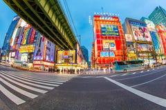 Akihabara at Tokyo in Japan Royalty Free Stock Photo