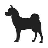 Akita Black Silhouette Royalty Free Stock Image