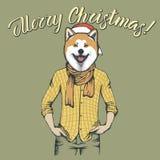 Dog Christmas vector illustration Royalty Free Stock Photo