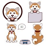 Akita dog vector icon set. Akita dog vector icon. Happy puppy set, front view and back stock illustration
