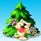 Akita Inu dog and fir tree. The lovely puppy Akita Inu on hinder legs and green fir tree on blue. A yellow dog a symbol 2018 new years according to the Chinese Stock Photos