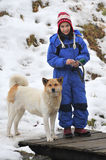 Akita Inu and girl Royalty Free Stock Images
