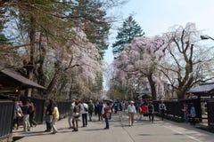 Akita, Japón - abril 27,2014: Sakura en distrito del samurai Imagen de archivo