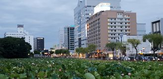 Akita miasto obrazy royalty free