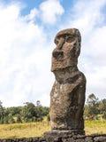The Akivi Moai Stock Image