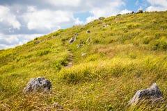 Akiyoshi plateau szczytu ślad, Yamaguchi fotografia stock