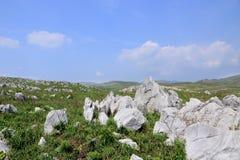 Akiyoshidai den största kalkstenplatån i Japan arkivfoto