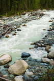 Akkem river in Mountains Altai Stock Photography