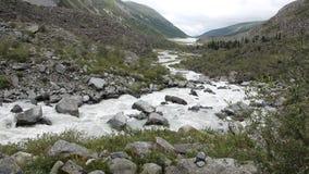 Akkem Rzeczny spływanie nad kamieniami wśród Altai gór, Rosja zdjęcie wideo