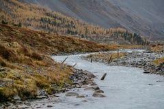 Akkem-Tal im Altai-Gebirgsnaturpark Stockbild