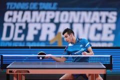 AKKUZU pode da rotação da parte superior de França Fotografia de Stock Royalty Free