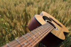 Akoestische gitaar op een tarwegebied royalty-vrije stock afbeeldingen
