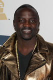 Akon Royalty Free Stock Photo