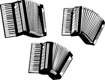 akordeon Zdjęcie Royalty Free