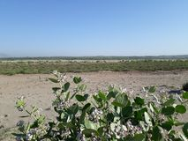 Akra widok pustynia fotografia stock