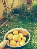 Akre-Curdistão Foto de Stock Royalty Free