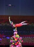 Akrobatik-Schüsseln Stockfoto