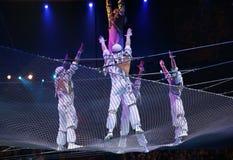 akrobatluft Royaltyfri Fotografi