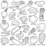 Akromatisk uppsättning med grönsaker, vektortecknad filmklistermärkear Arkivbild