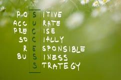 Akronym des Erfolgs handgeschrieben in dunkelgrünem auf natürlichem grünem Hintergrund Stockfoto