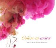 Akrylfärger och färgpulver i vatten Royaltyfria Foton